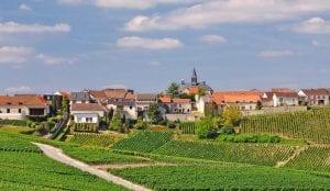 Champagne:  Vivre La Difference, Vivre La France  @FIAFNY,  #wine, #champagne