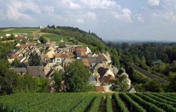 Loving Loire Valley Wines