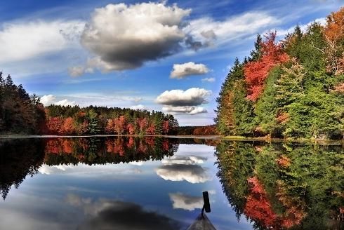 finger-lakes-wine-scene
